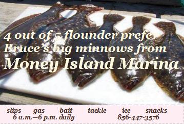 flounder advertisement