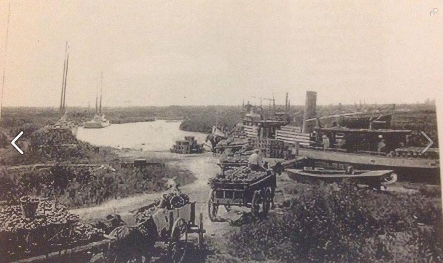 Newport Landing 1909